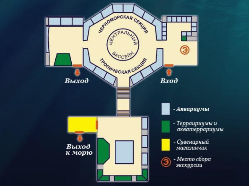 Схема аквариума в Севастополе